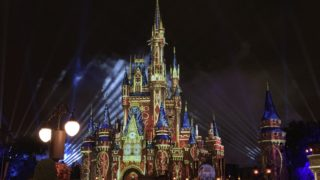 disney magic kingdom night